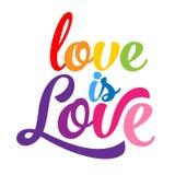 Miłość jest miłością - LGBT dumy slogan royalty ilustracja
