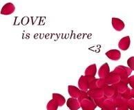 Miłość jest wszędzie Fotografia Stock