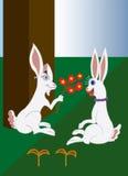 Miłość króliki Obrazy Royalty Free