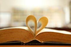 Miłość książki Fotografia Stock
