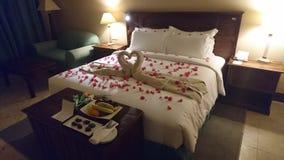 Miłość miesiąc miodowy fotografia royalty free