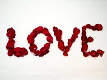 Miłość pisać z różanymi płatkami fotografia royalty free
