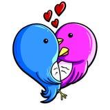 Miłość ptaki Zdjęcia Royalty Free