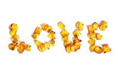 miłość zrobił płatków róży słowu Zdjęcia Stock