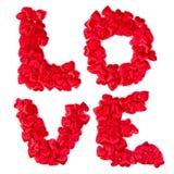 Miłości etykietka Obraz Stock