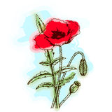 Miłości kwiecisty wektorowy tło Obraz Royalty Free