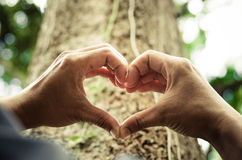 Miłości natura obraz royalty free