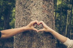 Miłości natura Fotografia Royalty Free