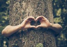 Miłości natura obrazy stock