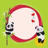 miłości panda Obrazy Stock