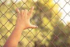 Miłości ręka Fotografia Stock