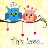 Miłości sowa Zdjęcia Royalty Free