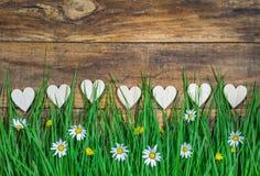 Miłości tło z wiele serc granicą i bujny zieloną łąką z stokrotką kwitnie zdjęcie stock