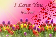 Miłości wiadomość kolor pełno royalty ilustracja