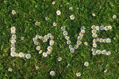 Miłości wycena kwiaty Zdjęcia Stock