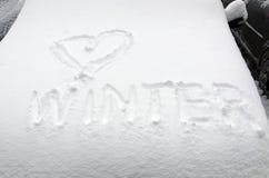 Miłości zima Zdjęcia Stock