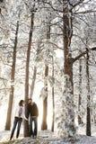 miłości zima kraina cudów obraz stock