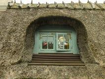 Miś patrzeje przez małego okno zdjęcie royalty free