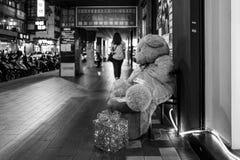 Miś przy nocą w Taipei, Tajwan obraz stock