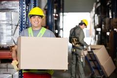 Mi agent de maîtrise adulte With Cardboard Box à l'entrepôt Images stock
