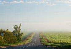Między polami droga Zdjęcie Stock