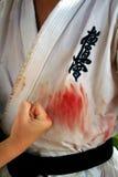 Międzynarodowy karate lata obóz szkoleniowy 2008 w Alushta Zdjęcia Royalty Free