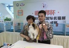 Międzynarodowy kota przedstawienie Fotografia Stock