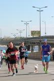 Międzynarodowy maraton Zdjęcie Royalty Free