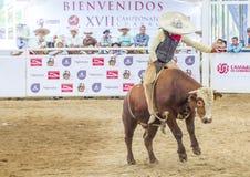 Międzynarodowy Mariachi & Charros festiwal Obrazy Stock