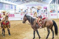Międzynarodowy Mariachi & Charros festiwal Fotografia Royalty Free