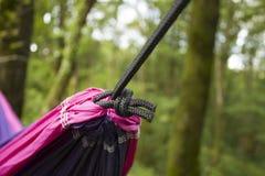 Miękki hamak na drzewach w lesie Zdjęcie Stock