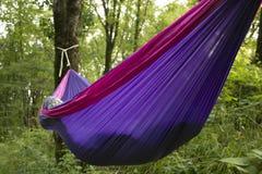 Miękki hamak na drzewach w lesie Fotografia Royalty Free