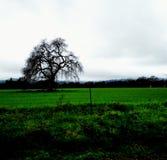 Mi lugar Imagen de archivo