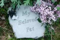 Mi monumento querido del animal doméstico con las lilas fotografía de archivo libre de regalías