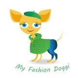 Mi perrito de la moda Imagen de archivo libre de regalías