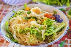(MI Quang) Nudel mit Fleisch, Gemüse, Fischen, Huhn und Gewürzen Lizenzfreie Stockbilder