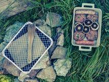 Mięsa i grill w ogródzie Fotografia Stock