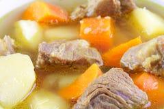 Mięsna polewka z warzywami obrazy stock