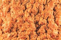 Mięsny cutlet gotowy z sokiem Fasta food odgórny widok zdjęcie stock