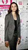 Mia Maestro. Attends the LALIFF Screening of `Chagas: A Hidden Affliction` held at the Egyptian Arena Theatre in Hollywood, CA on 10/07/06 Stock Photos