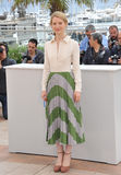 Mia Wasikowska Lizenzfreies Stockfoto