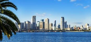 Miami śródmieścia linia horyzontu fotografia royalty free