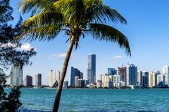Miami śródmieścia linia horyzontu zdjęcia stock