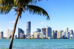 Miami śródmieścia linia horyzontu fotografia stock