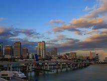 Miami śródmieście od Miami portu Obrazy Stock