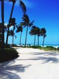 Miami photo stock