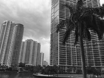 Miami Stock Foto