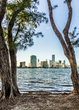 Miami bayfront cityscape skyline Stock Photography