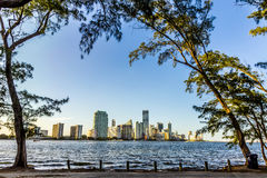 Miami bayfront cityscape skyline Royalty Free Stock Photos