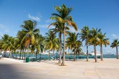 Miami Bayfront park Zdjęcia Stock